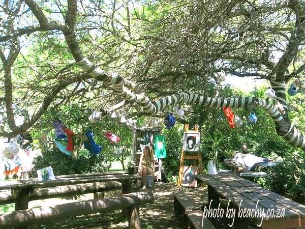 at Tea in the Trees in Chintsa West
