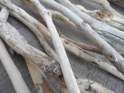 driftwood sticks